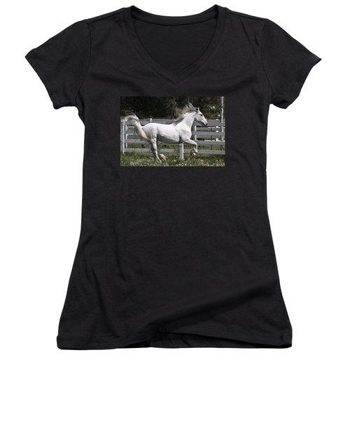 Maestoso Aurorra Women's V-Neck T-Shirt (Junior Cut) by Wes and Dotty Weber