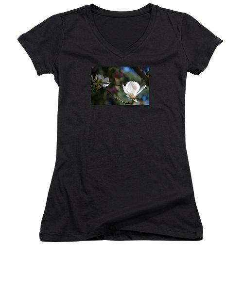 Magnolia Blossoms Women's V-Neck T-Shirt
