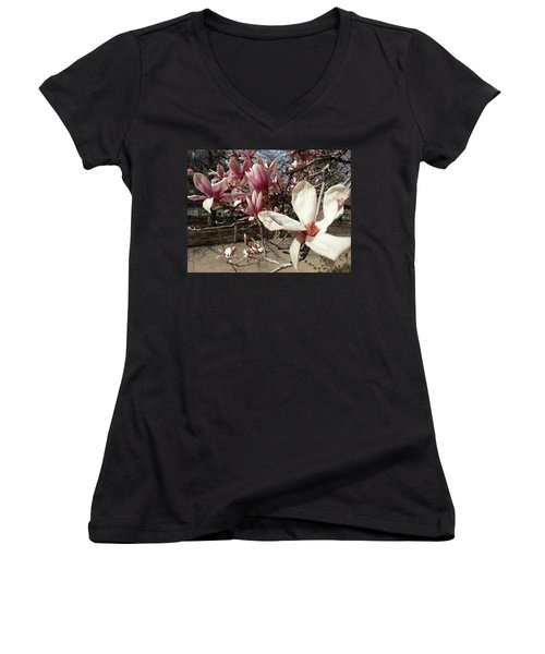 Women's V-Neck T-Shirt (Junior Cut) featuring the photograph Magnolia Branches by Caryl J Bohn