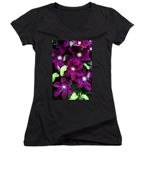 Majestic Amethyst Colored Clematis Women's V-Neck T-Shirt (Junior Cut) by Kay Novy