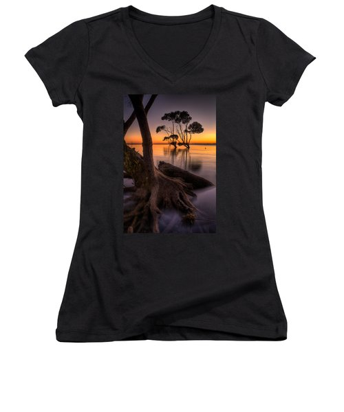 Mangroves Of Beachmere Women's V-Neck (Athletic Fit)