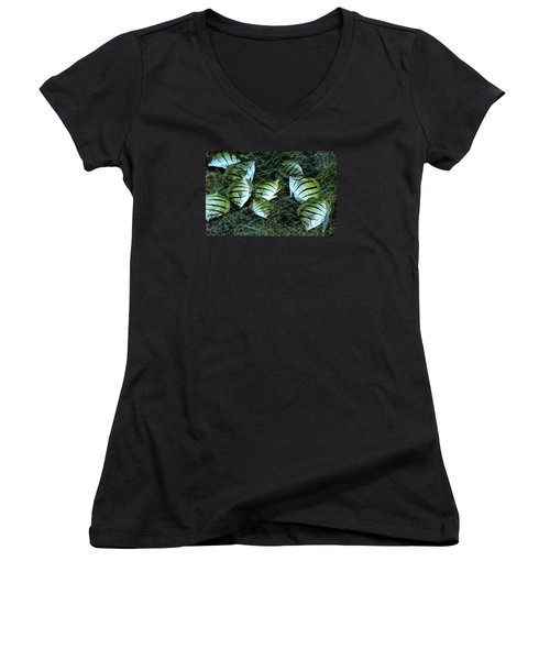 Manini Catch Women's V-Neck T-Shirt (Junior Cut) by Lehua Pekelo-Stearns