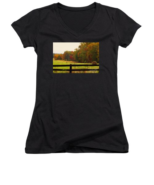 Maryland Countryside Women's V-Neck T-Shirt (Junior Cut) by Patti Whitten