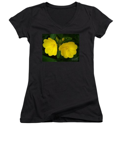 Women's V-Neck T-Shirt (Junior Cut) featuring the photograph Matching Pair by Sara  Raber