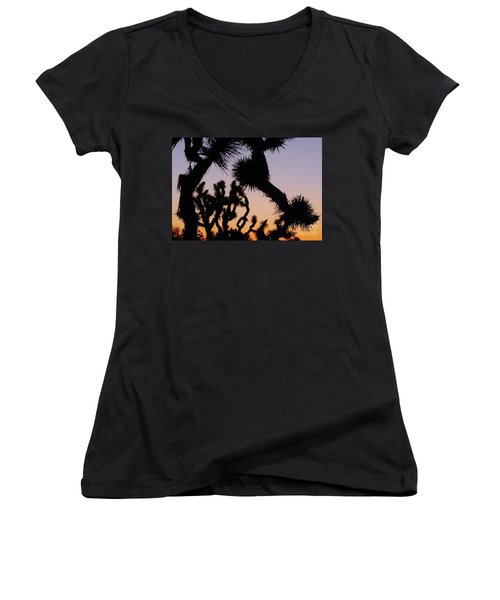 Women's V-Neck T-Shirt (Junior Cut) featuring the photograph Meet And Greet by Angela J Wright