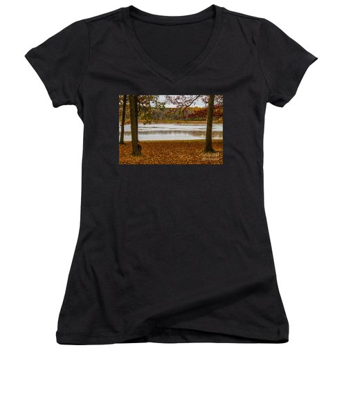 Mendon Ponds Women's V-Neck T-Shirt