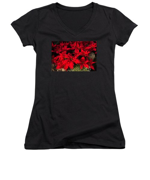 Merry Scarlet Poinsettias Christmas Star Women's V-Neck T-Shirt