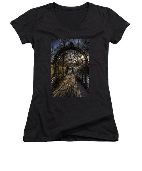 Metal Garden Women's V-Neck T-Shirt (Junior Cut) by Nathan Wright