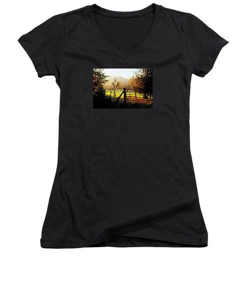 Moffit Bridge  Women's V-Neck T-Shirt (Junior Cut) by Daniel Thompson