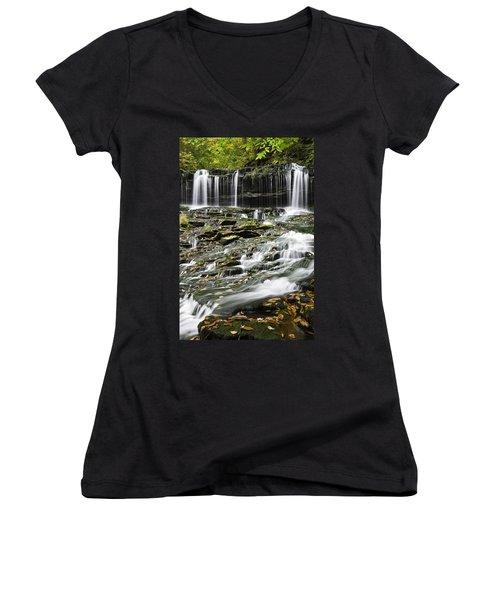 Mohawk Falls 2 Women's V-Neck T-Shirt (Junior Cut)