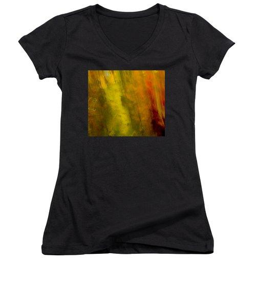 Mojo Women's V-Neck T-Shirt (Junior Cut) by Darryl Dalton
