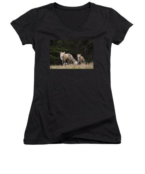 Momma Fox With Her Kit Women's V-Neck T-Shirt (Junior Cut) by Sonya Lang