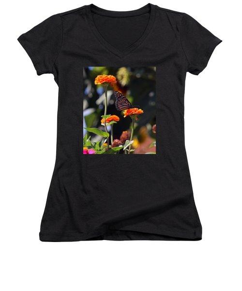 Monarch Butterfly And Orange Zinnias Women's V-Neck T-Shirt (Junior Cut) by Kay Novy
