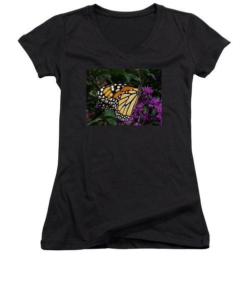 Women's V-Neck T-Shirt (Junior Cut) featuring the photograph Monarch by Lingfai Leung