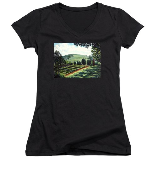 Monticello Vegetable Garden Women's V-Neck T-Shirt (Junior Cut) by Penny Birch-Williams