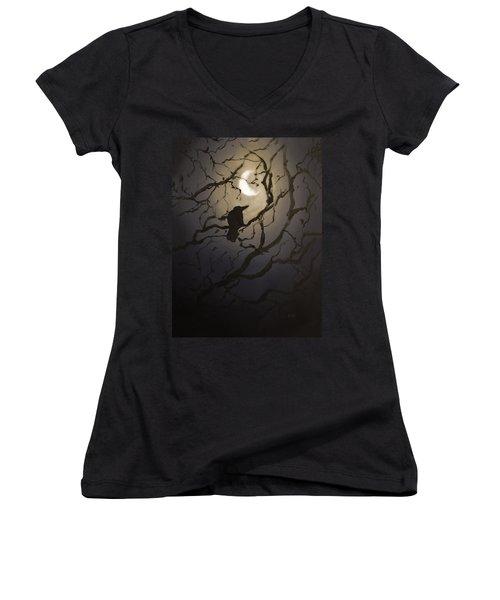 Moonlit Perch Women's V-Neck T-Shirt
