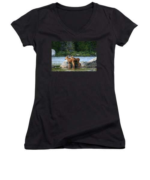 Moose Calves In Maine Women's V-Neck T-Shirt