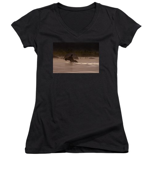 Moose Swim Women's V-Neck T-Shirt (Junior Cut) by Brent L Ander