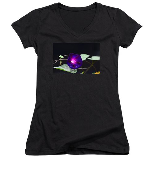Morning Glory - Grandpa Ott's Women's V-Neck T-Shirt (Junior Cut) by Kathy Eickenberg