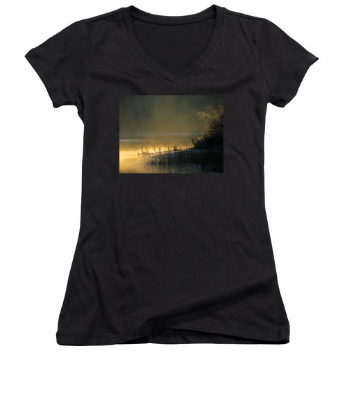 Morning Mist Women's V-Neck T-Shirt (Junior Cut) by Dianne Cowen