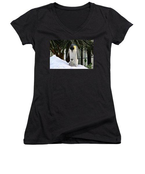 Mother Penguin And Baby Women's V-Neck T-Shirt