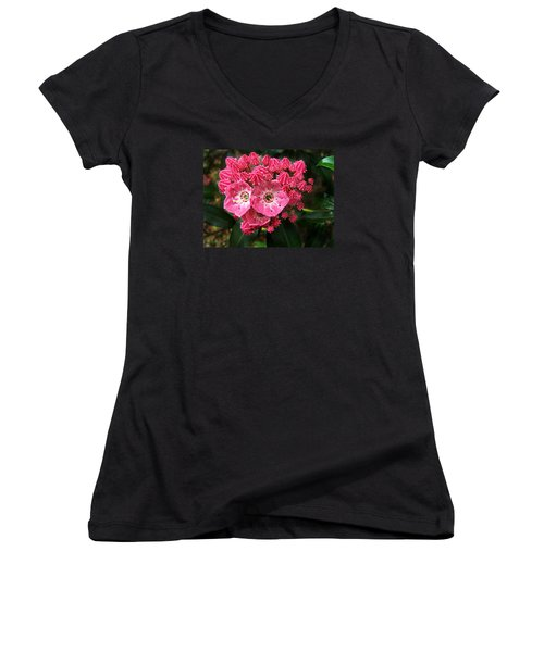 Women's V-Neck T-Shirt (Junior Cut) featuring the photograph Mountain Laurel ' Olympic Fire ' by William Tanneberger