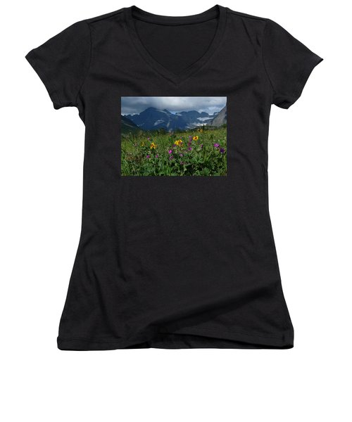 Mountain Wildflowers Women's V-Neck T-Shirt (Junior Cut) by Alan Socolik