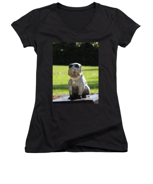 Women's V-Neck T-Shirt (Junior Cut) featuring the photograph Mr Cool by Aaron Martens