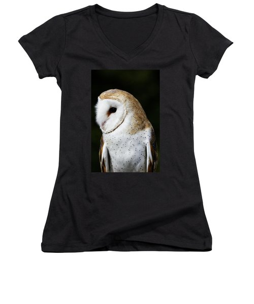 Mr Owl  Women's V-Neck (Athletic Fit)