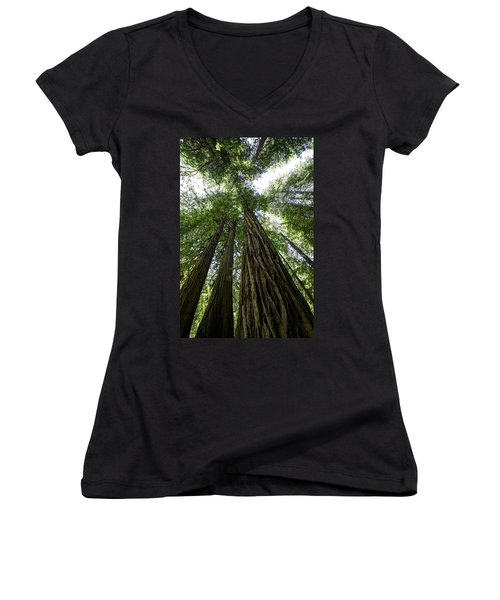 Muir Woods I Women's V-Neck (Athletic Fit)