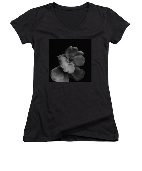 Women's V-Neck T-Shirt (Junior Cut) featuring the photograph My Fair Lady by Rachel Mirror