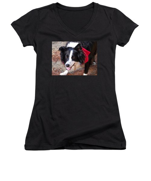 Women's V-Neck T-Shirt (Junior Cut) featuring the photograph Female Border Collie by Eunice Miller