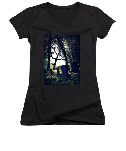 Women's V-Neck T-Shirt (Junior Cut) featuring the photograph Mystical Fantasies by Melanie Lankford Photography