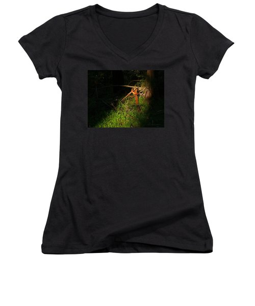 Women's V-Neck T-Shirt (Junior Cut) featuring the photograph Natural Bands 2 by Evelyn Tambour