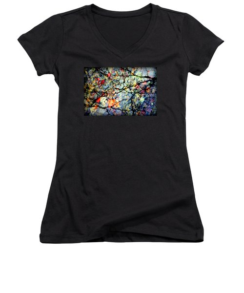 Natures Stained Glass Women's V-Neck (Athletic Fit)