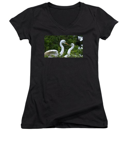 Women's V-Neck T-Shirt (Junior Cut) featuring the photograph Nest Building by John F Tsumas