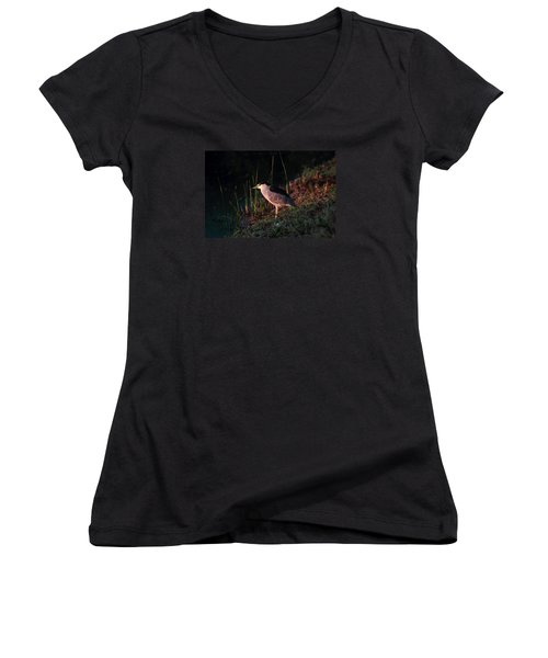 Women's V-Neck T-Shirt (Junior Cut) featuring the photograph Night Heron  by Duncan Selby
