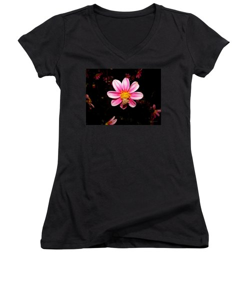 Nighttime Visitor Women's V-Neck (Athletic Fit)