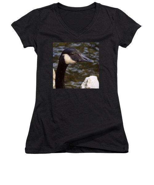 Women's V-Neck T-Shirt (Junior Cut) featuring the photograph Northern Neighbor by Joseph Skompski