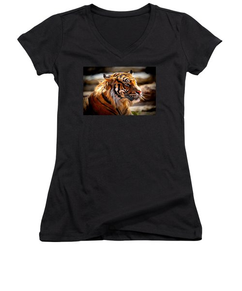 Not A Tigger Women's V-Neck T-Shirt (Junior Cut) by Lynn Sprowl