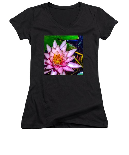Women's V-Neck T-Shirt (Junior Cut) featuring the photograph Nymphaeaceae by Rob Sellers