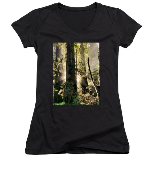 Old Growth Forest Light Women's V-Neck T-Shirt
