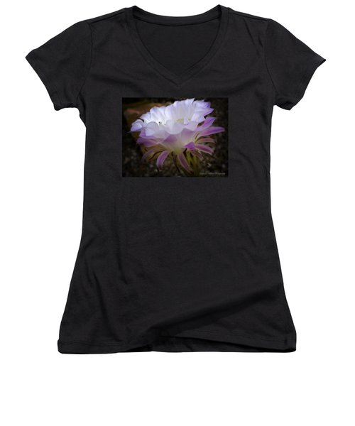 Women's V-Neck T-Shirt (Junior Cut) featuring the photograph On The Edge by Lucinda Walter