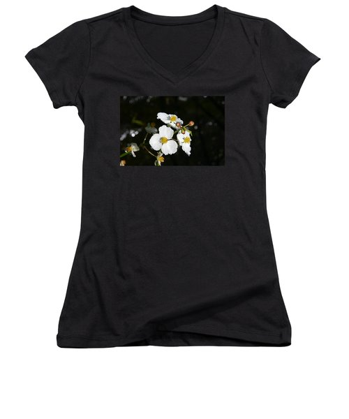 Women's V-Neck T-Shirt (Junior Cut) featuring the photograph On The Shore Line by Denyse Duhaime