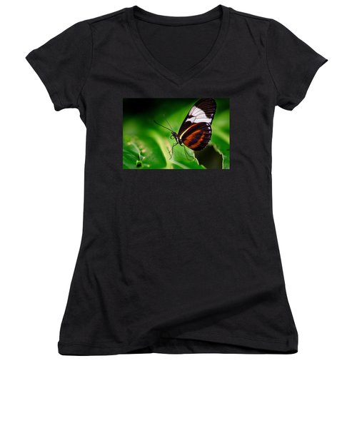On The Wings Of Beauty Women's V-Neck