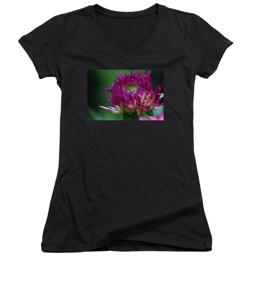 Women's V-Neck T-Shirt (Junior Cut) featuring the photograph Opening Day by Denyse Duhaime