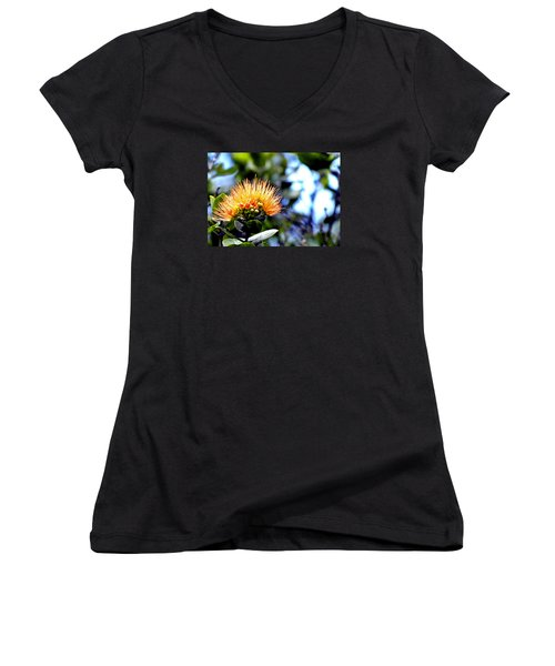 Women's V-Neck T-Shirt (Junior Cut) featuring the photograph Orange Lehua On Volcano Ranch by Lehua Pekelo-Stearns