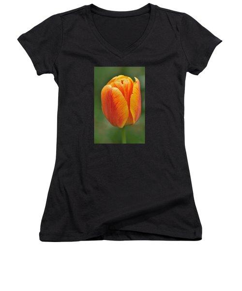 Orange Tulip Women's V-Neck T-Shirt (Junior Cut) by Matthias Hauser