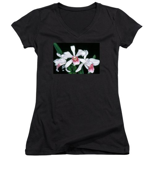 Orchid 10 Women's V-Neck T-Shirt (Junior Cut) by Andy Shomock