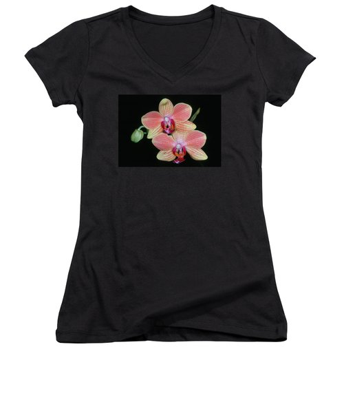 Orchid 4 Women's V-Neck T-Shirt (Junior Cut) by Andy Shomock